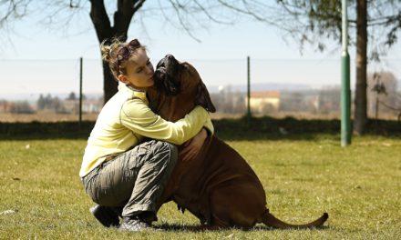 Cateva lucruri pe care iubitorii de caini nu ar trebui sa le uite